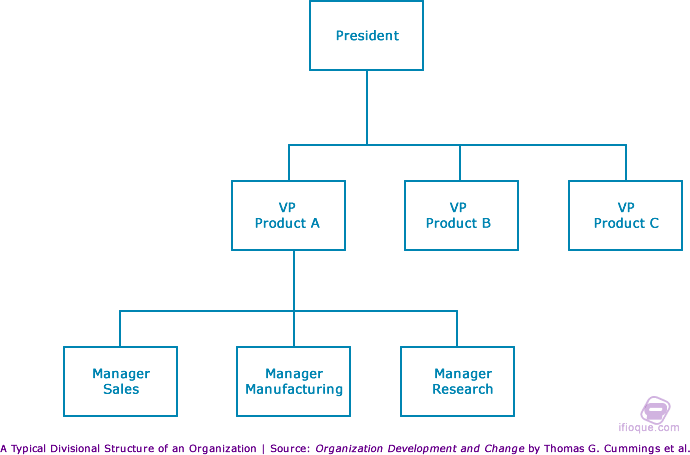 A typical divisional structure of an organization